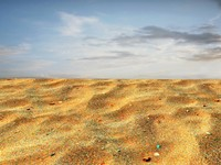 Sand 63