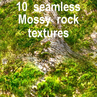 Mossy Rock Collection 7