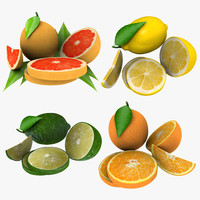 citrus fruit max