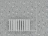 maya cast iron radiator