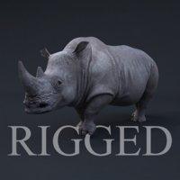 realistic rhino rig 3d model