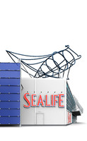 sea life max
