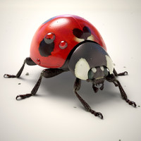 3d model animation ladybug