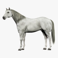 3ds max horse white fur