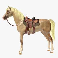 Horse A