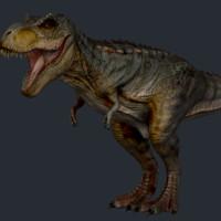 3d rex trex