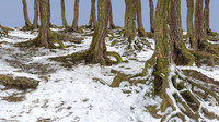 forest winter 3d model