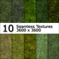 10 Realistic Seamless Grass Textures