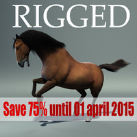3d horse rig