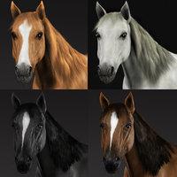 horses fur obj
