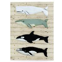 decor whales max