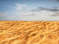 Sand 66