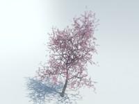 max realistic sakura tree