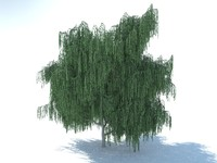 3ds max realistic willow tree