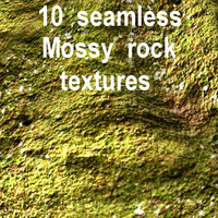 Mossy Rock Collection 8