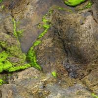 Wet rock 22