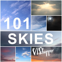 101 VIShopper Skies