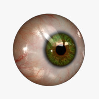 Eyeball (20 colors) Rendering & Real-time KA-Set 01 green