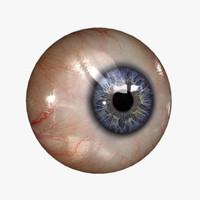 3d realistic human eye 20 model