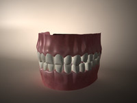 mouth gums tongue 3d c4d