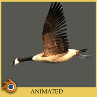 blend canada goose