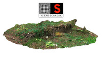 3d model forest clump roots