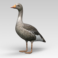3d model goose