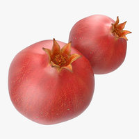 pomegranate modeled nature 3d 3ds