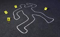 crime scene 3d 3ds