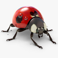 3d model of animation ladybug v-ray fur