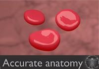 free blend model red blood