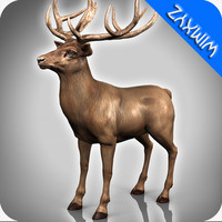 deer adapted rigging 3d obj