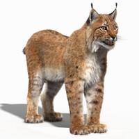 eurasian lynx fur 3d max