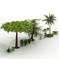 exotic fairy plants pack 3d model