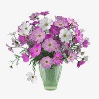 3ds max bouquet cosmos flowers