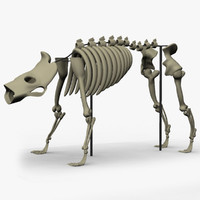 Beast Skeleton