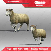 3d model sheep animations