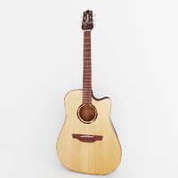 matte takamine acoustic guitar 3d model
