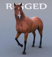 realistic horse rig 3d model