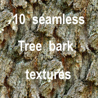 Tree Bark Collection 7