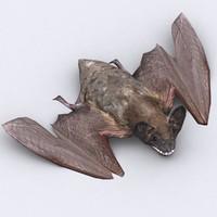 bat critters 3d 3ds
