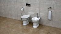 toilet dxf