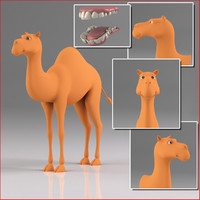 cartoon camel ma