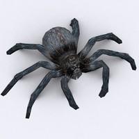 spider 3ds
