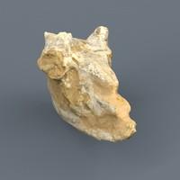 antelope skull fossil obj