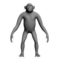 3ds chimpanzee