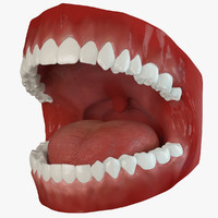 Mouth Animated 2.1 Premium