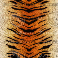 Digital Tiger Fur v1