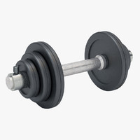free max model weights