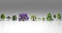10 trees 3d model